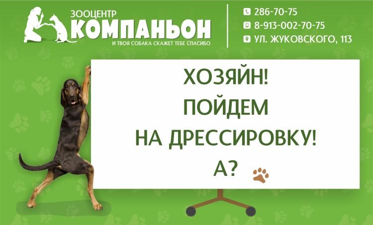 компаньон_дрессировка_новосибирск